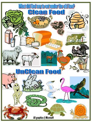 clean and unclean food list