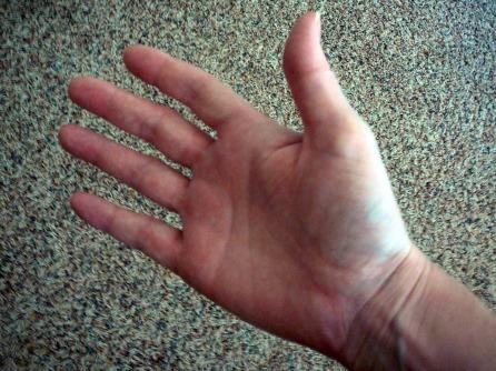 Bilderesultat for right hand